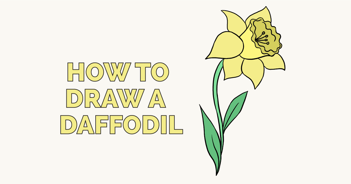 1200x628 How To Draw A Daffodil