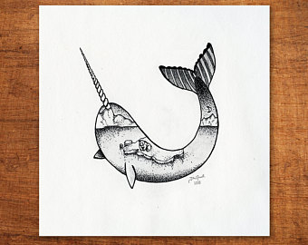 340x270 Narwhal Drawing Etsy