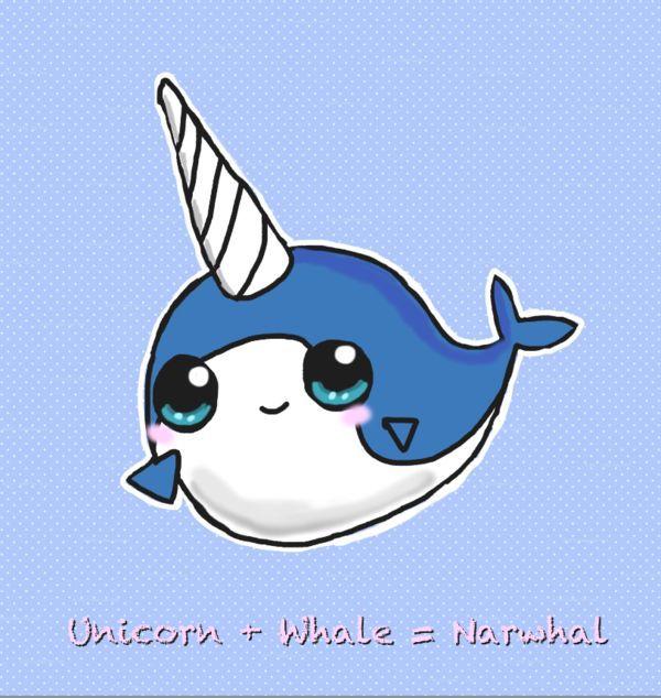 600x634 Unicorn +whale = Narwhal Narwhal