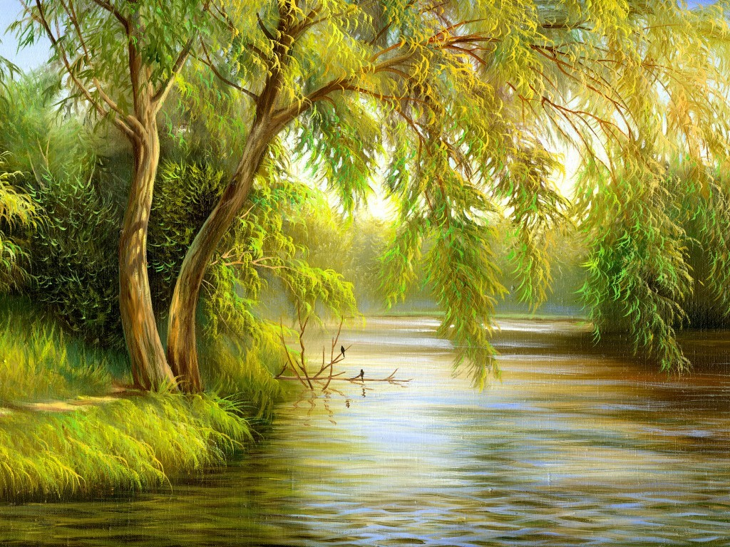 nature images drawing at getdrawings | free for personal use