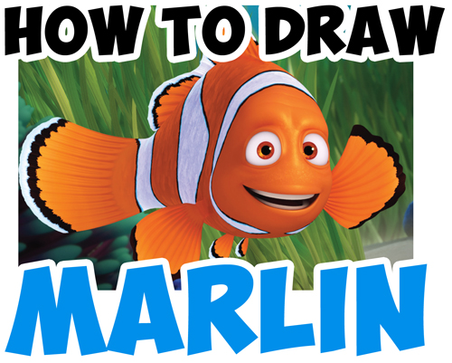 500x401 How To Draw Marlin From Finding Dory And Finding Nemo