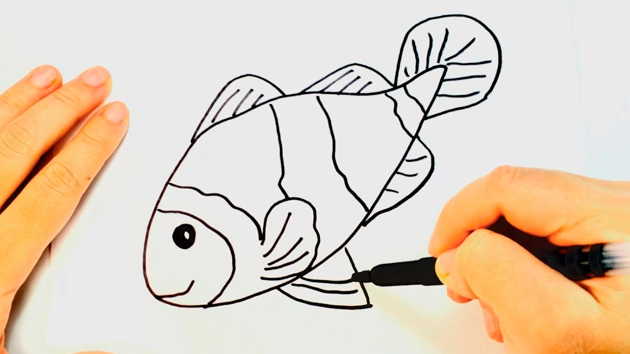 1280x720 How To Draw A Fish (Nemo) Fish Easy Draw Tutorial