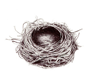 Line Drawing Nest : Nest drawing at getdrawings free for personal use