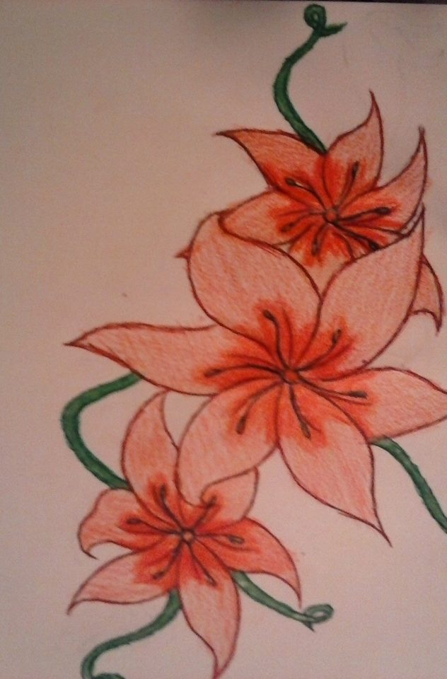 632x960 Pretty Flower Drawing Of Mine D By Celestieldelinquent