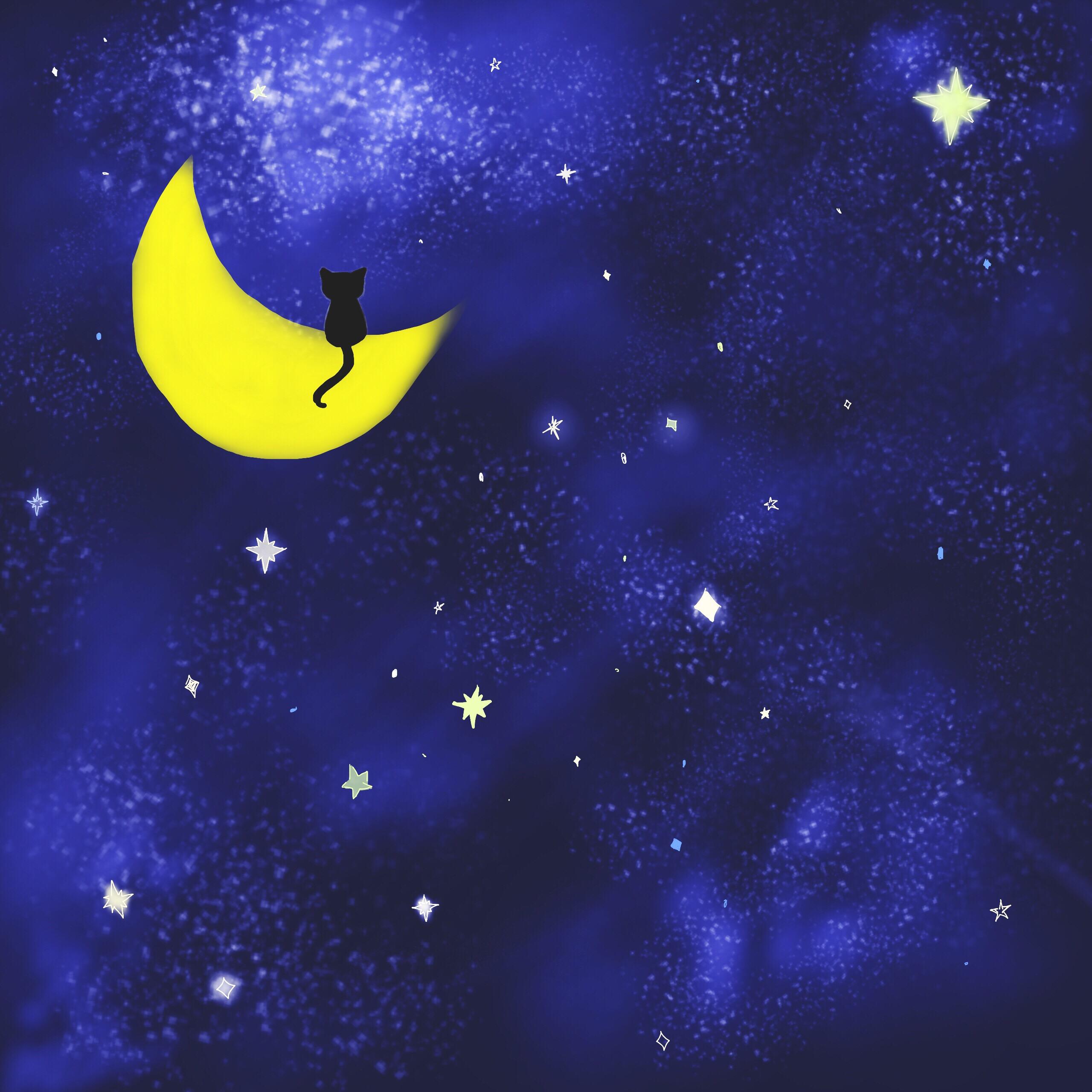 2560x2560 Wdpnightsky Sky Night Moon Cat Stars Starynight Drawing