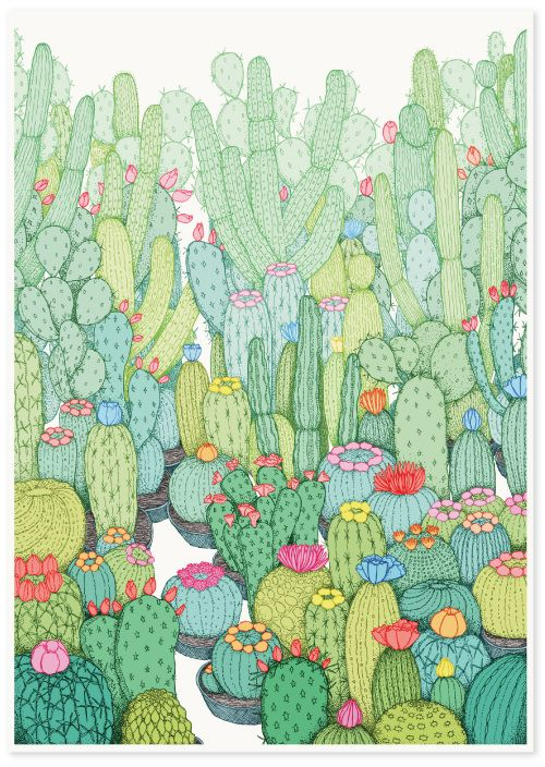 500x704 334 Best Captus.suculentas. Images On Succulents