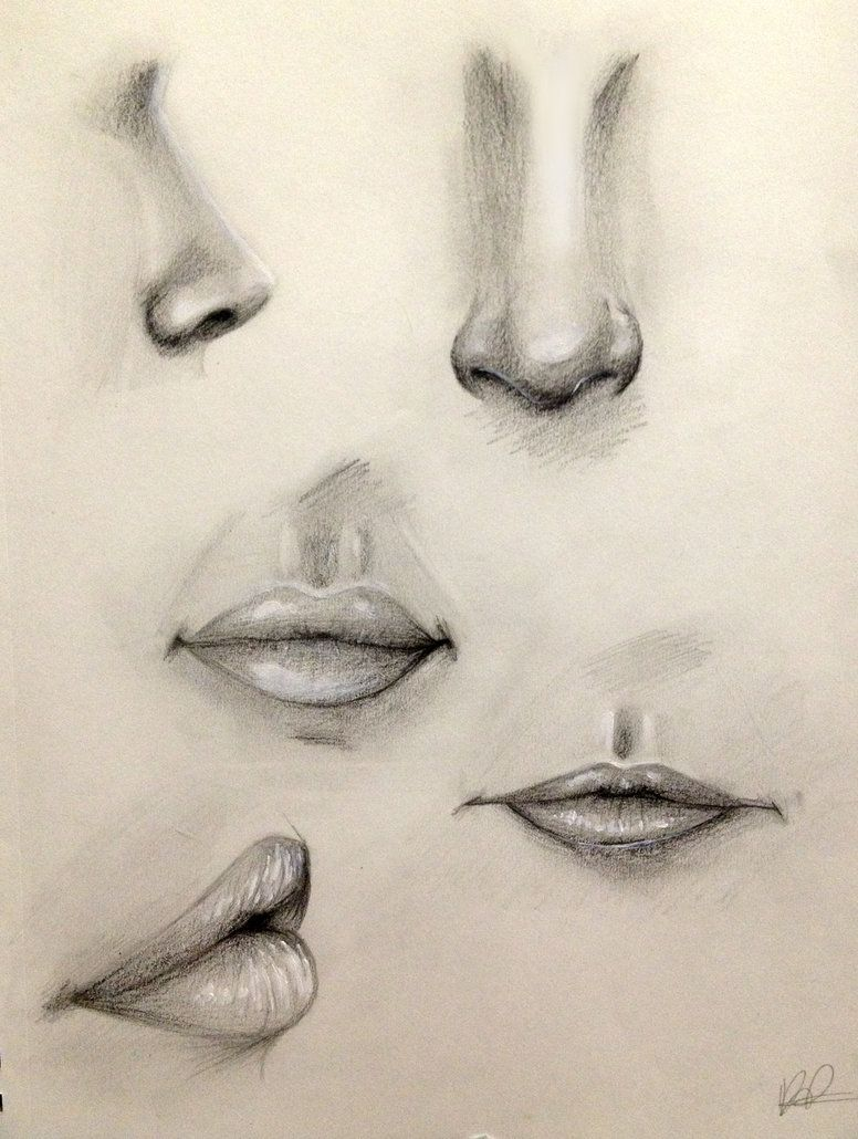 776x1030 Nose And Lip Practice By Kaspiian On Art Faces