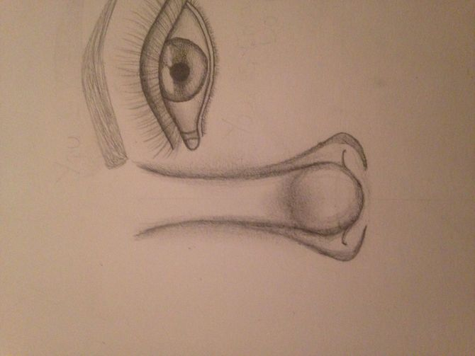 670x503 3 Ways to Draw a Nose
