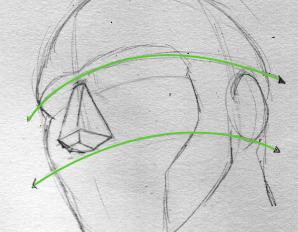 600x467 Nose Drawing Tutorial A Geometrical Approach