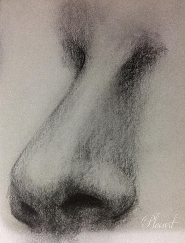 783x1024 Pencil Drawing Of Nose Pencil Pleoart