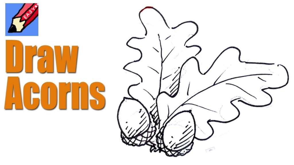 1024x576 How To Draw Leaves How To Draw Acorns Amp Oak Leaves Real Easy