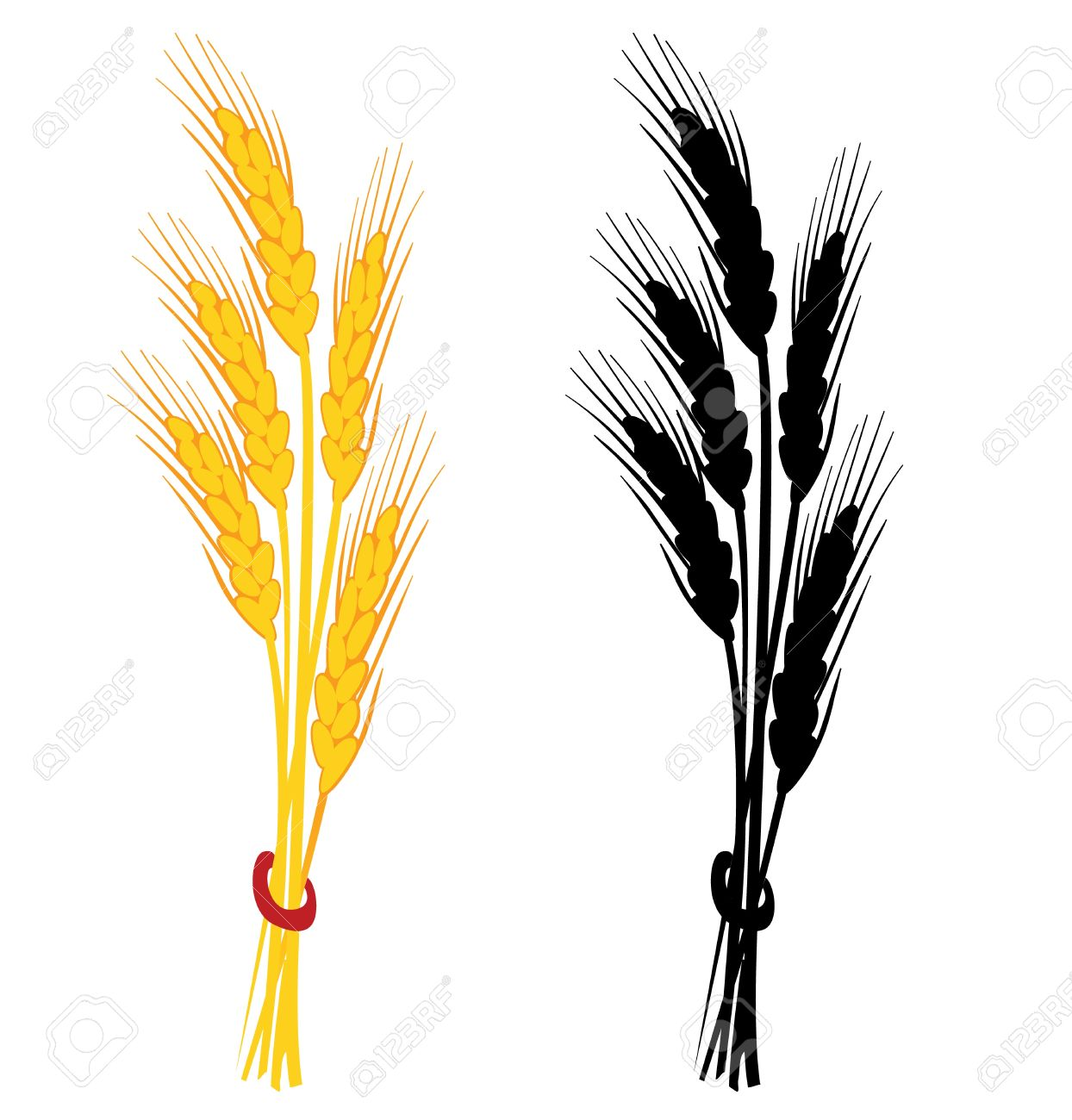 1244x1300 5,246 Oat Stock Illustrations, Cliparts And Royalty Free Oat Vectors