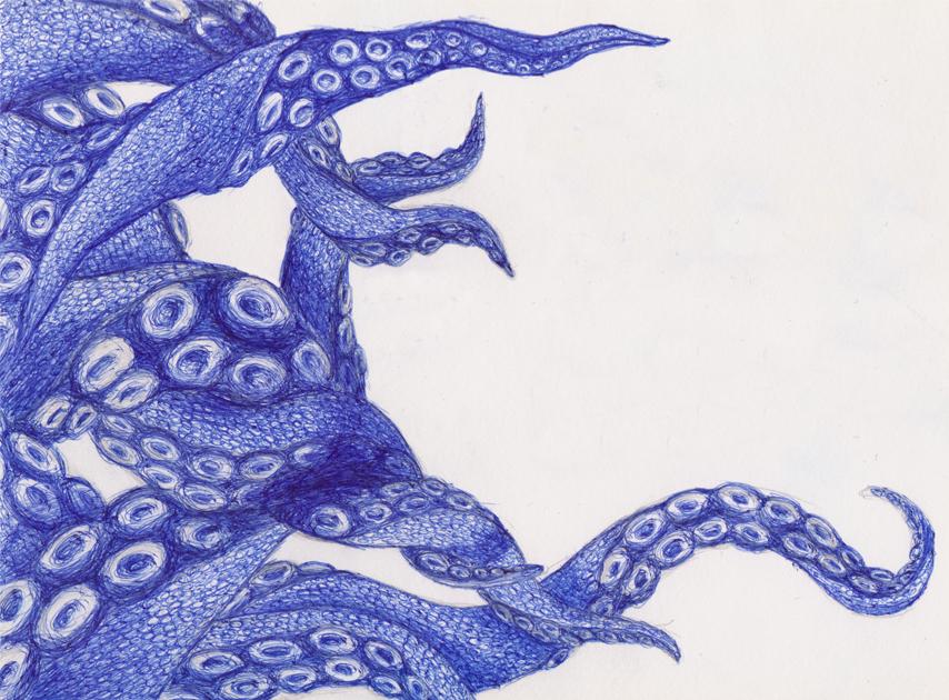 854x630 Octopus Drawing By Kokotex