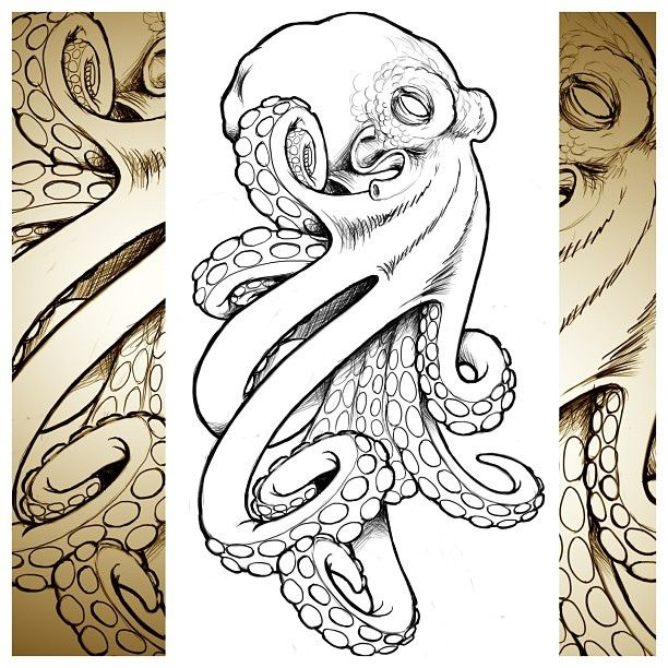 612x612 Cool Octopus I Whipped Up For A Client.
