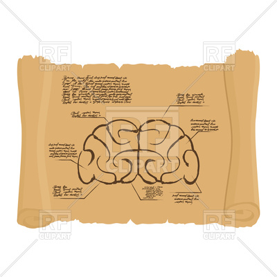 400x400 Brain Of Old Scroll Drawing Royalty Free Vector Clip Art Image