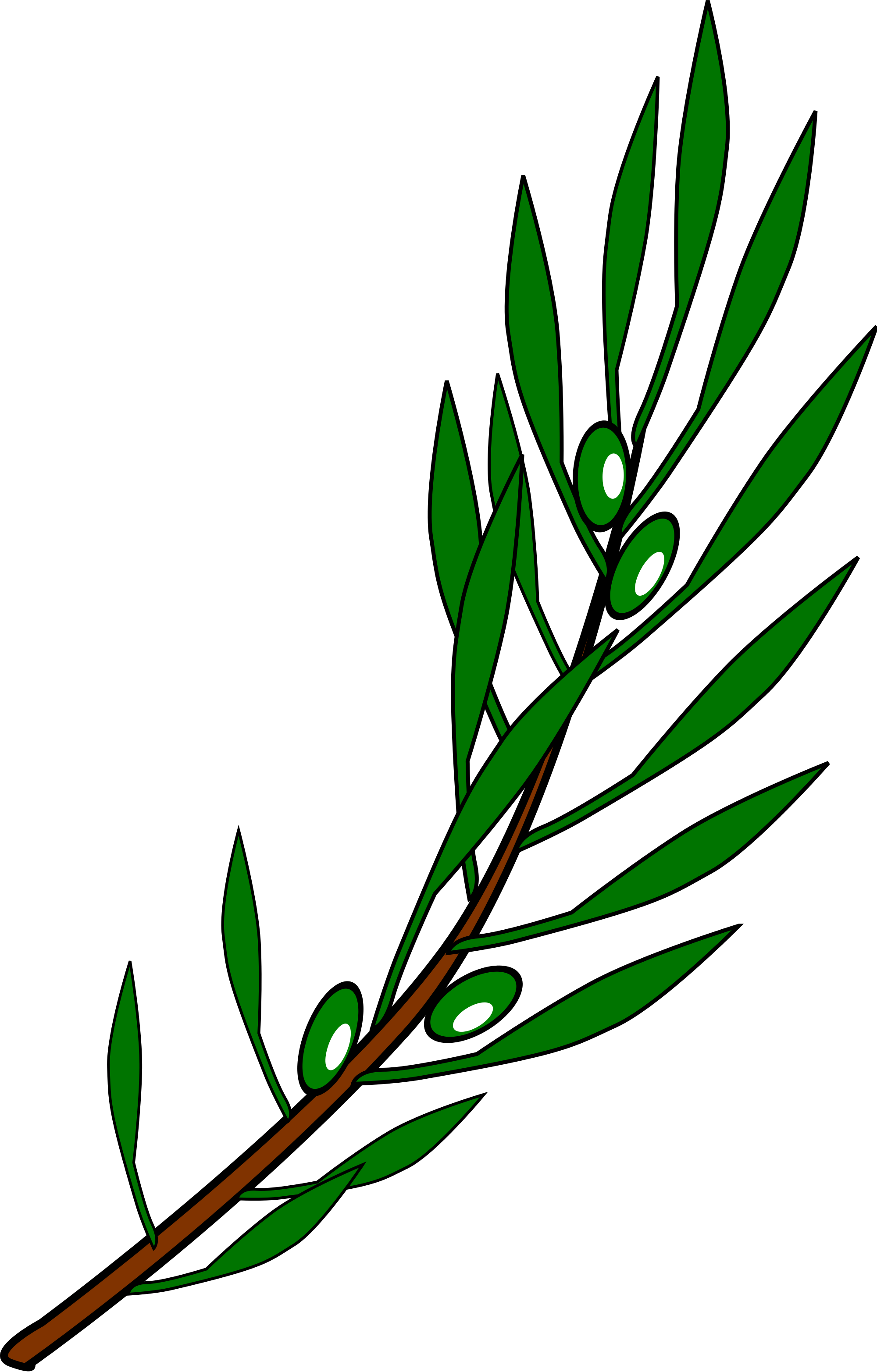 Olive Branch Drawing at GetDrawings.com | Free for personal use ...