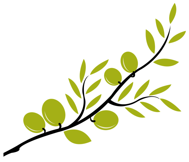 639x548 Image Of Olive Tree Clipart