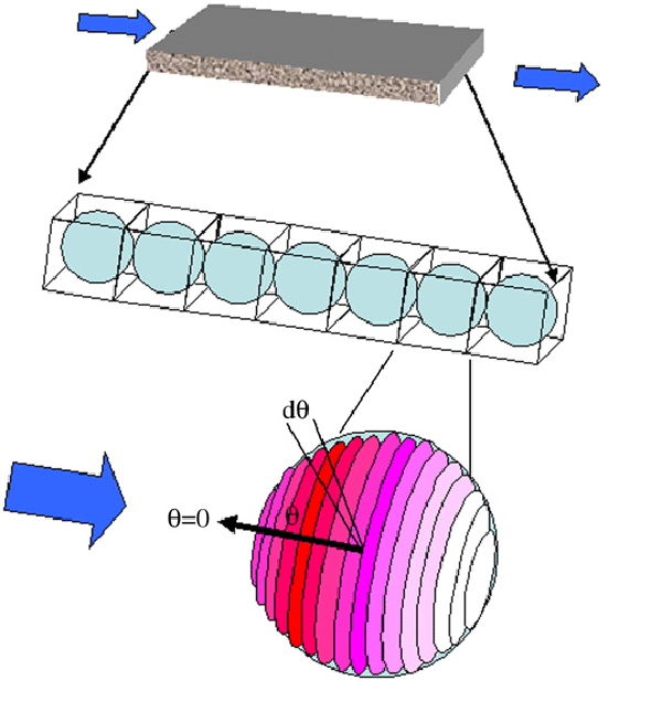 600x645 Schematic Drawing Depicting One Dimensional (1 D) Advective