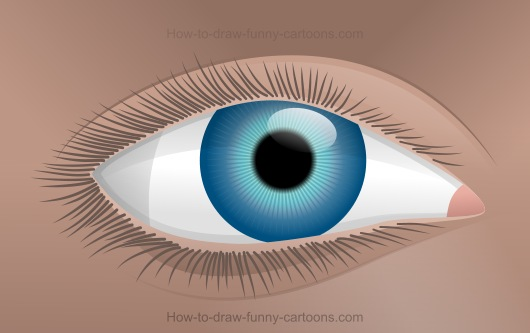 530x333 How To Draw An Eye