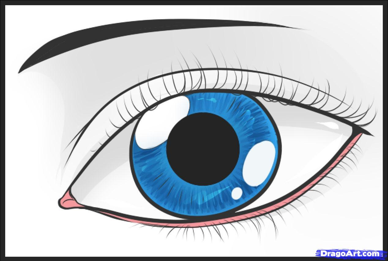 1268x853 How To Draw An Easy Eye, Step By Step, Eyes, People, Free Online