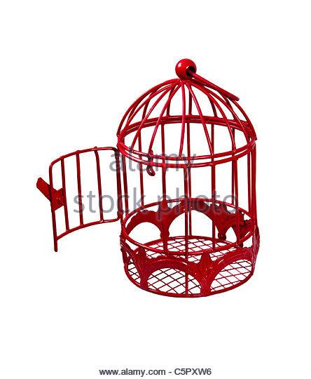 444x540 Bird Cage Open Stock Photos Amp Bird Cage Open Stock Images