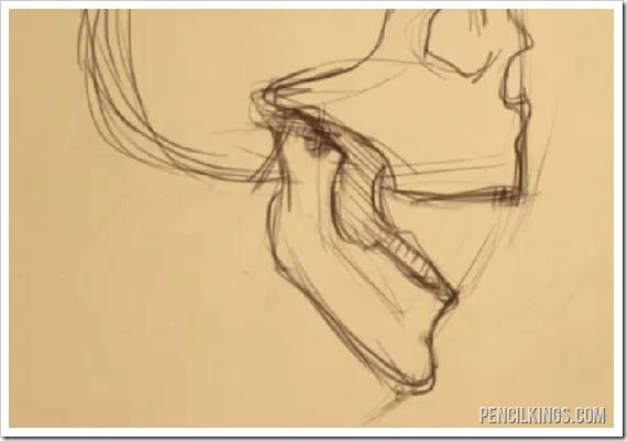 570x401 How To Draw An Open Mouth From The Side