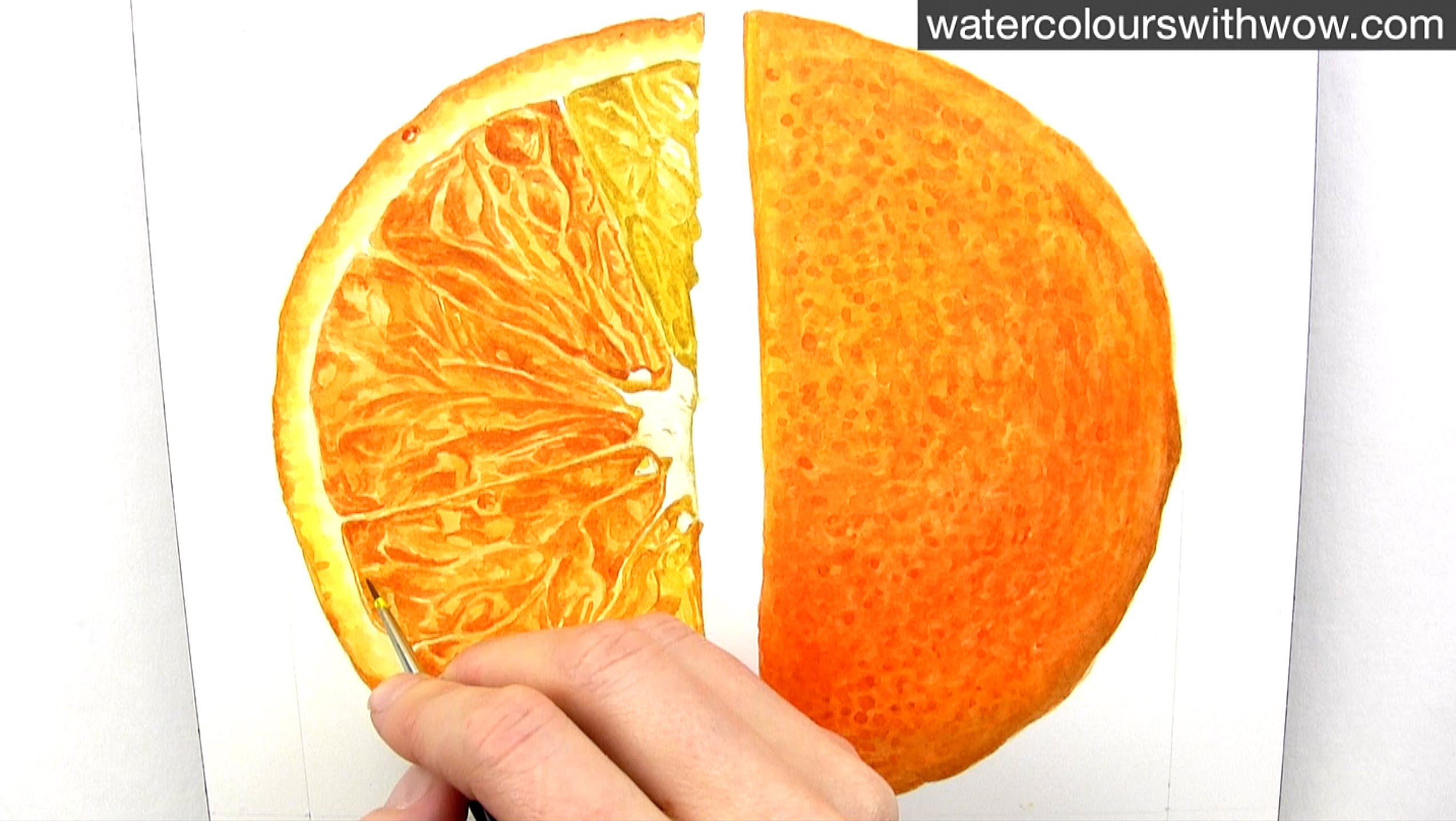 2546x1437 How To Paint A Realistic Juicy Orange Slice In Watercolour