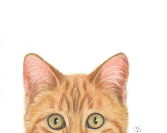 340x270 Orange Tabby Print Tabby Cat Art Calico Cat Orange Tabby