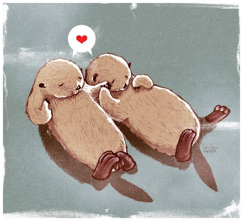 820x747 Did You Know That Otters Hold Hands While Sleeping So They Don'T