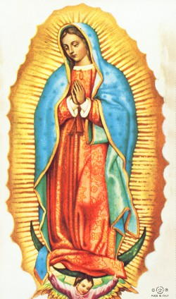 250x424 Our Lady Of Guadalupe Custom Prayer Card Virgen Maria
