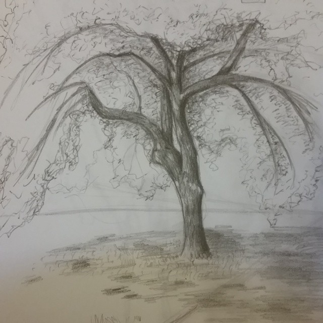 640x640 Outside Drawing By Sminn