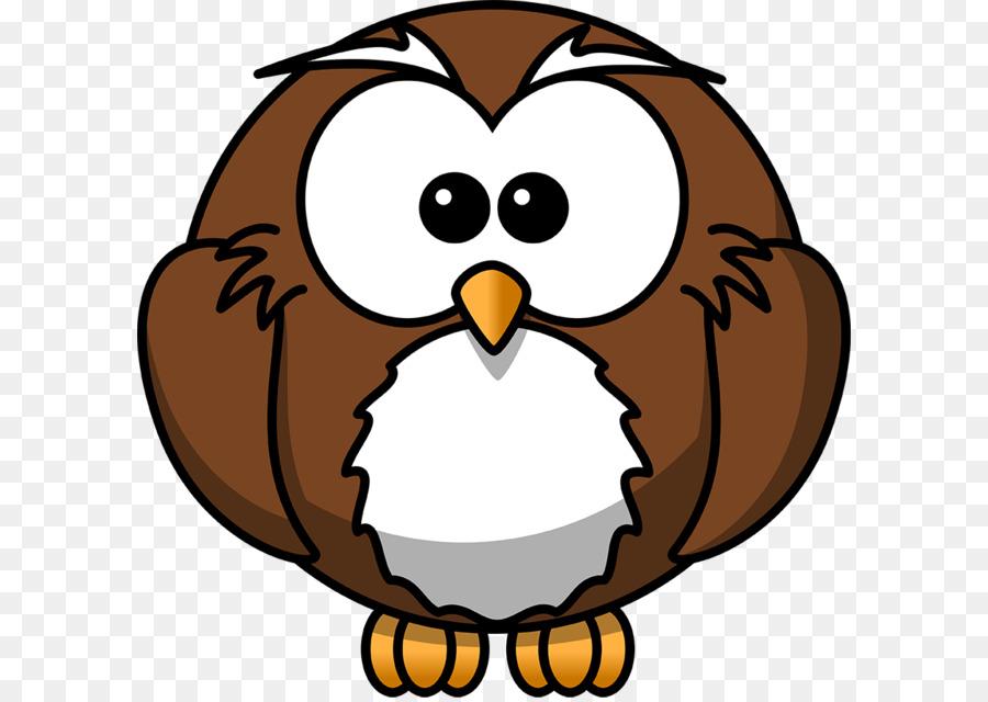 900x640 Owl Cartoon Drawing Animation