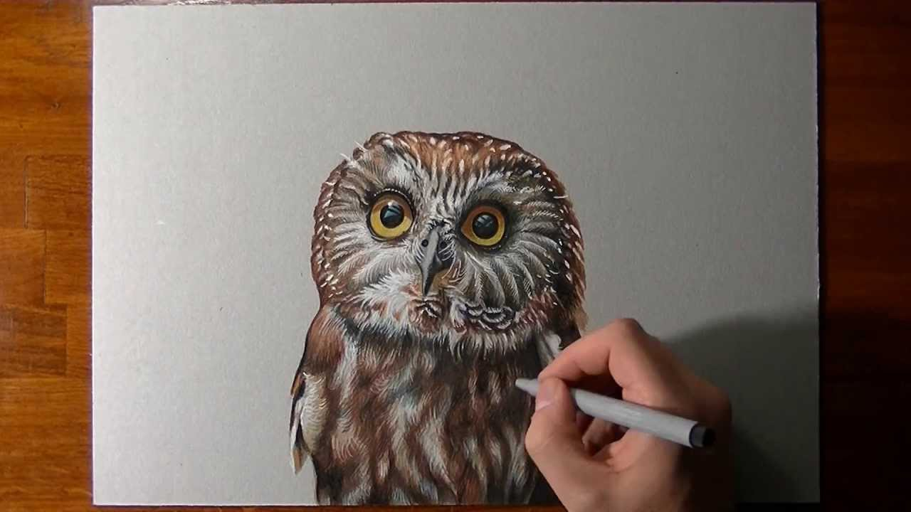 1280x720 How To Draw An Owl