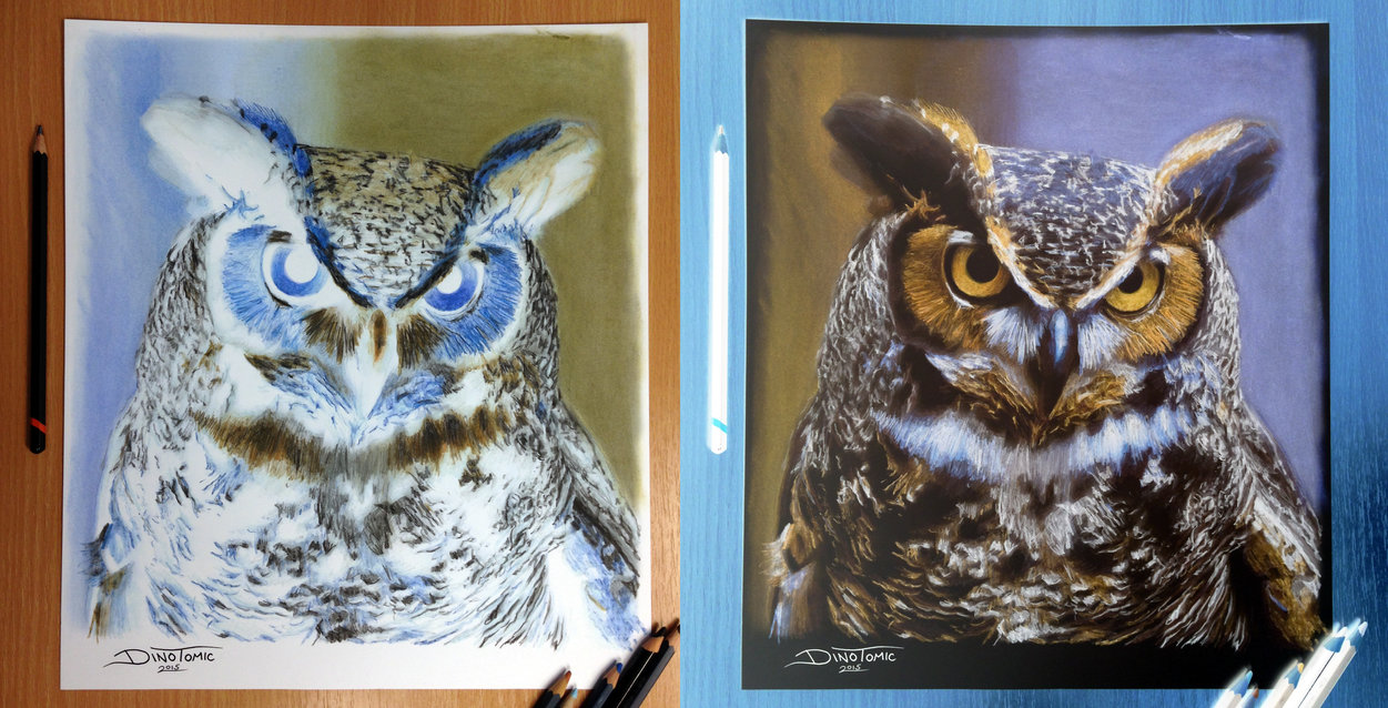 1251x638 Owl Inverted Color Pencil Drawing By Atomiccircus