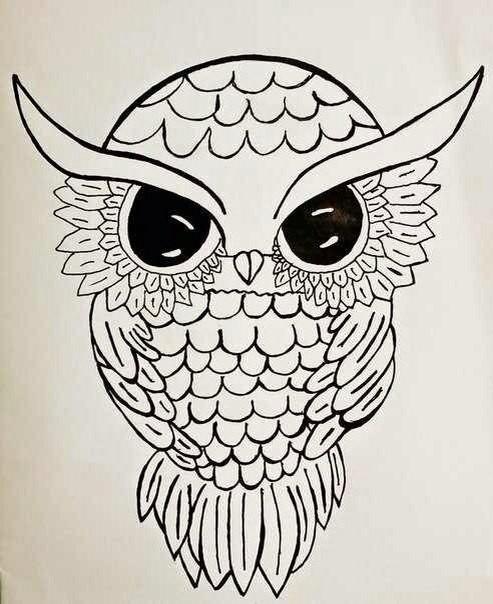 493x604 Owl