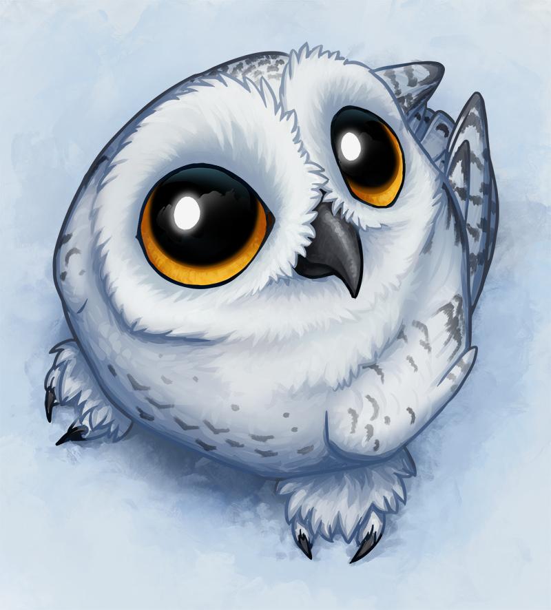 800x886 Snowy Owl By Khaidu