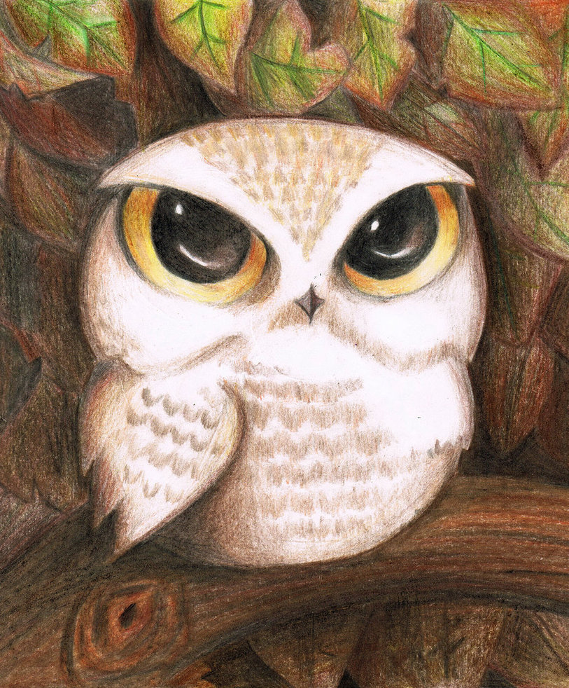 813x982 Cute Owl By Lovelylittlesunshine