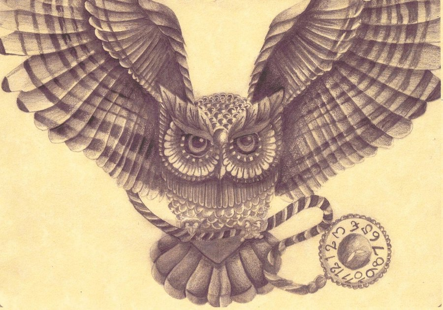 900x629 Owl Drawing By Amylou31