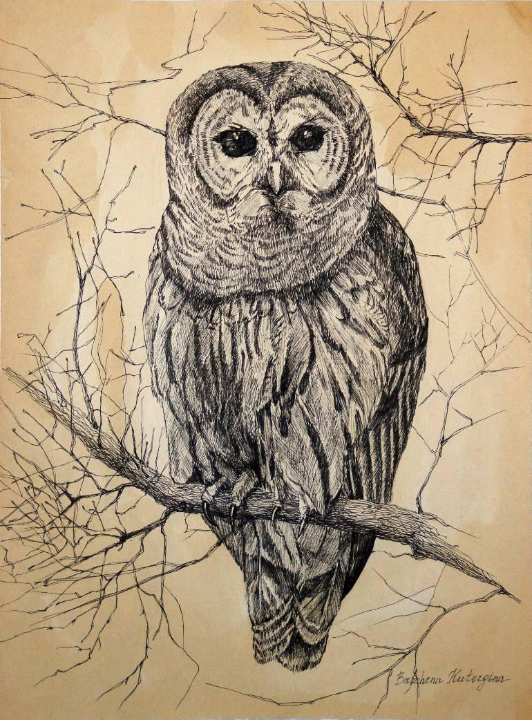770x1042 Saatchi Art Owl Drawing By Bazhena Kutergina