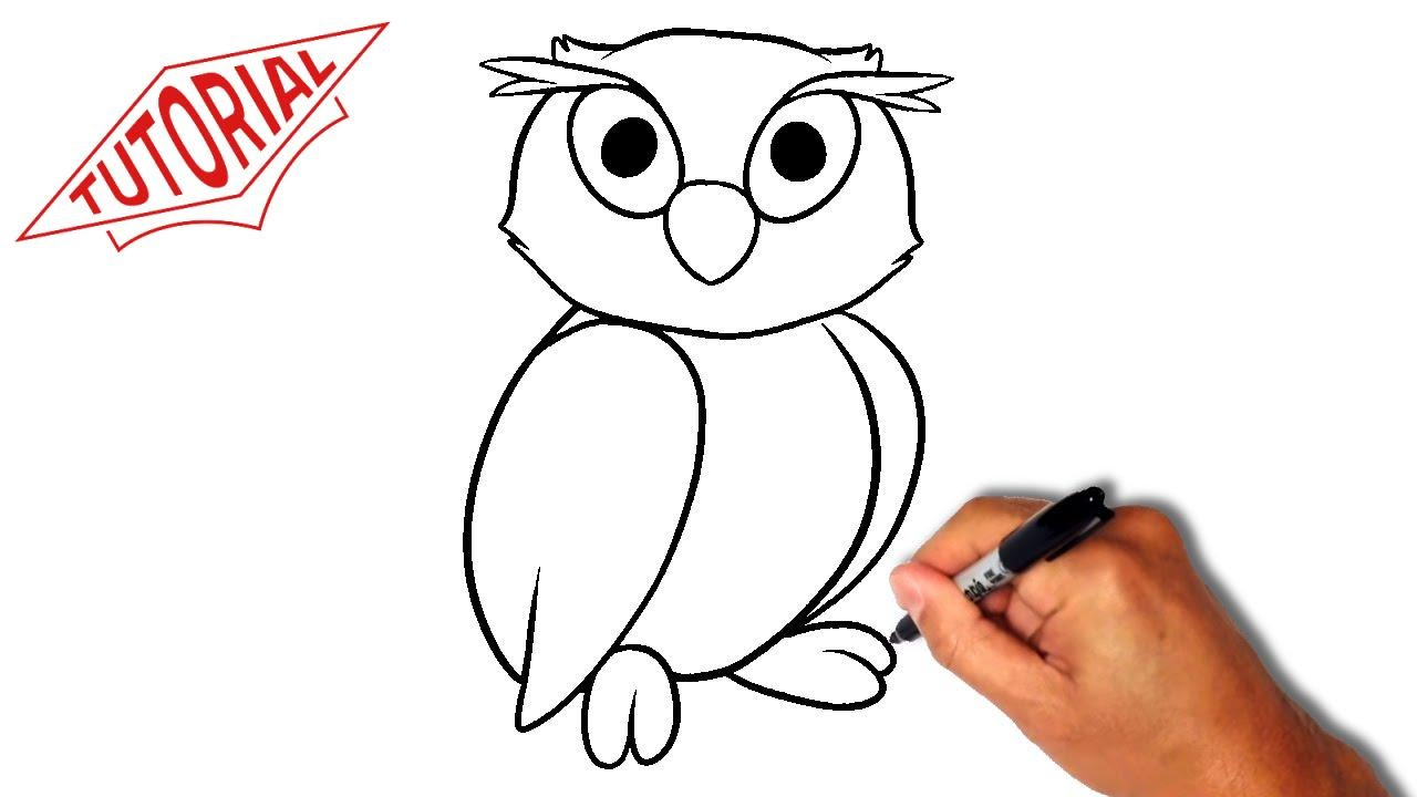 1280x720 How To Draw An Owl. Easy Step By Step Drawing Lessons For Kids