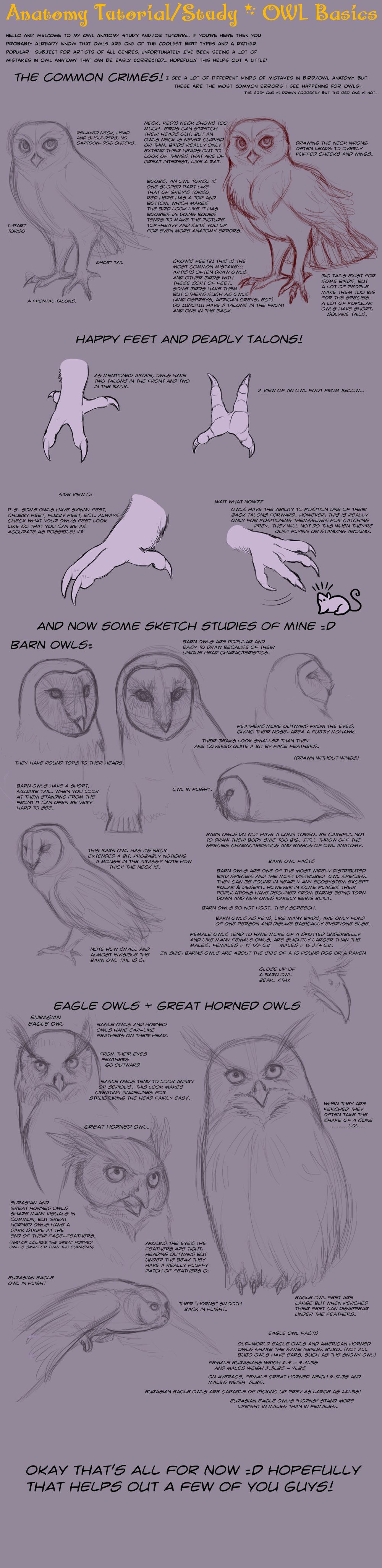 Owl Drawing Tutorial at GetDrawings.com | Free for personal use Owl ...