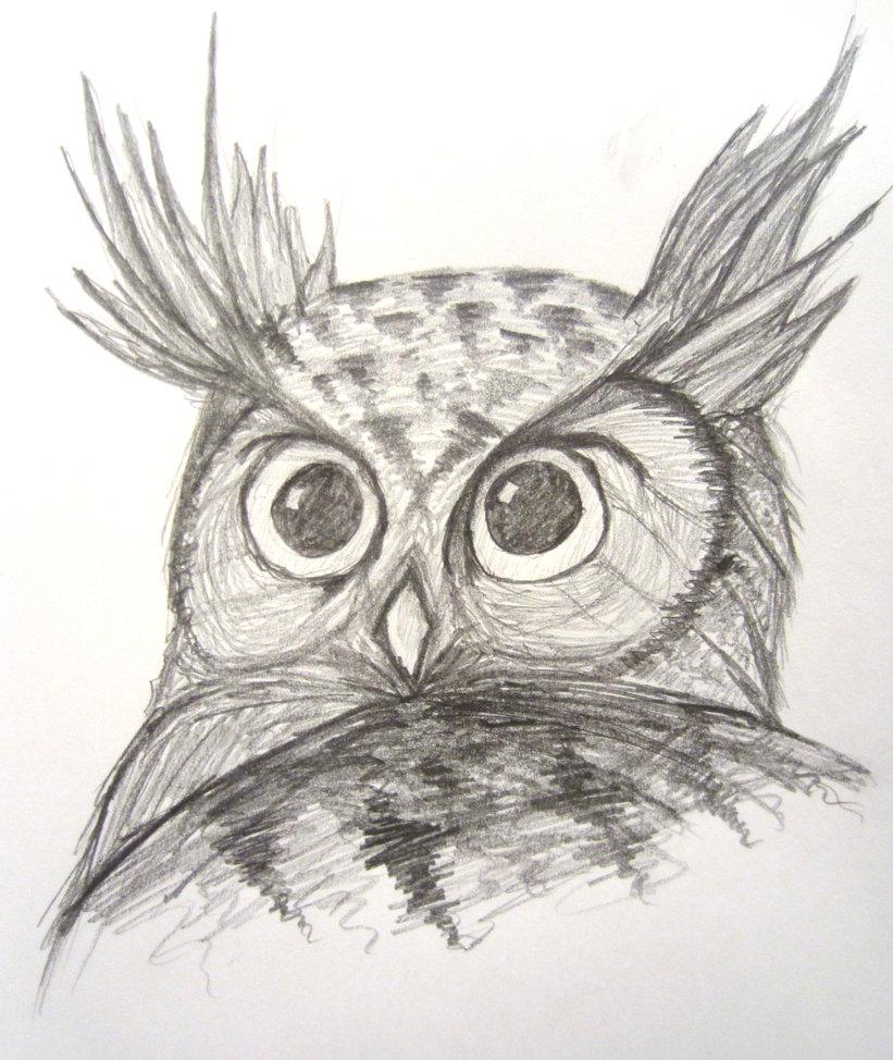 821x974 Horned Owl
