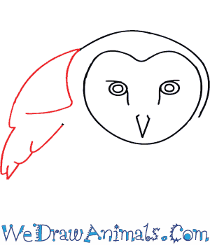 300x350 How To Draw A Barn Owl