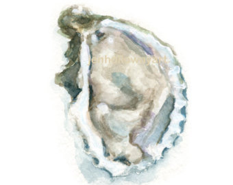 340x270 Art Oyster Oyster Shell Print Watercolor Oyster Print