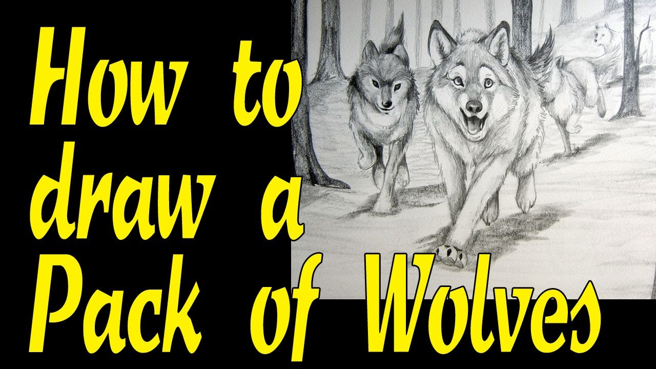 1280x720 How To Draw A Pack Of Wolves