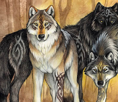 395x343 Wolf Drawing