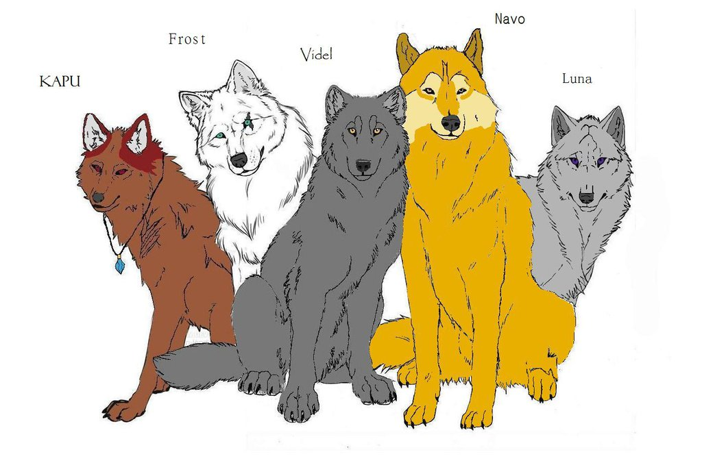 1024x676 Wolves Fury Wolf Pack Characters By Wolfteen96