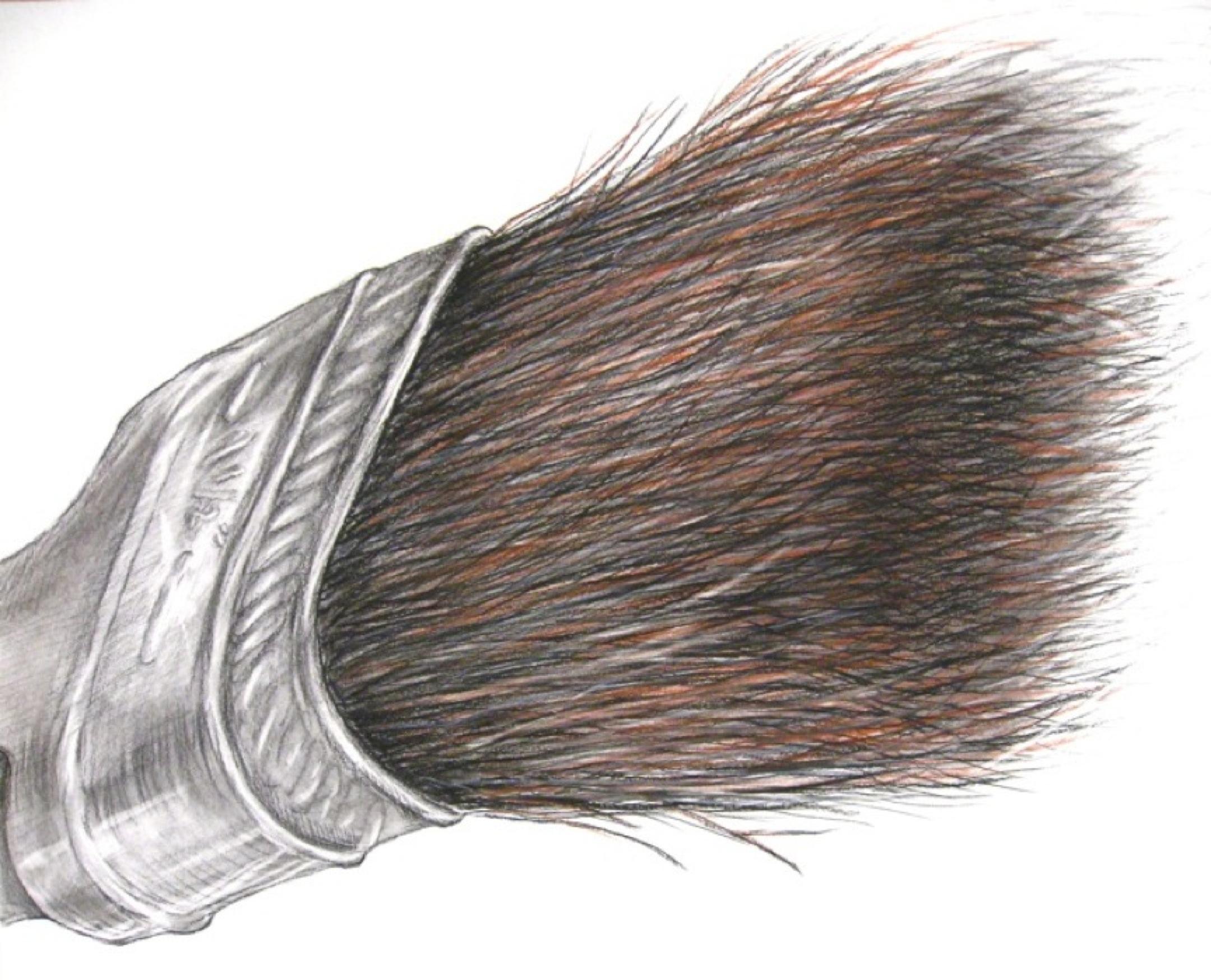 2160x1747 Student Drawing Paintbrush Magnification Philip Hazard