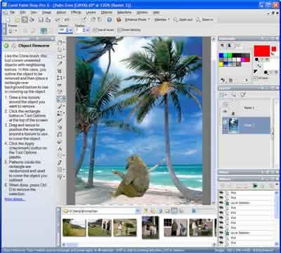 400x361 Paint Shop Pro X Review