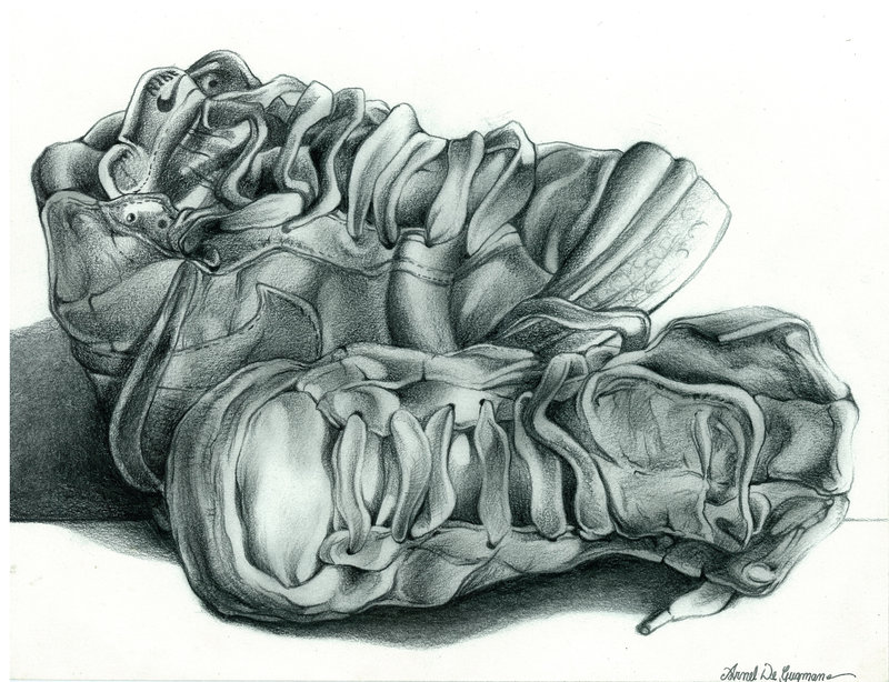 800x614 Still Life Drawing Nike Shoes By Cowboys8822